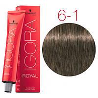 Краска для волос IGORA ROYAL Cendre, Schwarzkopf Professional 60 мл 6-1 Темно-русый Сандре