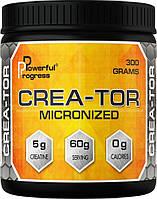 Powerful Progress Crea-Tor Micromized 300 g