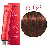 Перманентная крем-краска IGORA ROYAL Chocolates, Schwarzkopf Professional 60 мл 5-68 Светло-коричневый шоколадный красный
