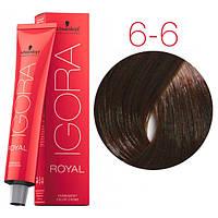 Перманентная крем-краска IGORA ROYAL Chocolates, Schwarzkopf Professional 60 мл 6-6 Темно-русый шоколадный
