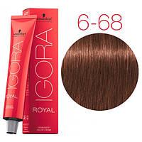 Перманентная крем-краска IGORA ROYAL Chocolates, Schwarzkopf Professional 60 мл 6-68 Темно-русый шоколадный красный