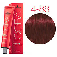 Перманентная крем-краска IGORA ROYAL Reds, Schwarzkopf Professional 60 мл 4-88 Средне-коричневый красный экстра