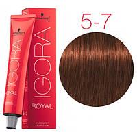 Перманентная крем-краска IGORA ROYAL Reds, Schwarzkopf Professional 60 мл 5-7 Светло-коричневый медный