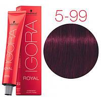 Перманентная крем-краска IGORA ROYAL Reds, Schwarzkopf Professional 60 мл 5-99 Светло-коричневый фиолетовый экстра