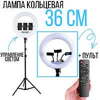 Кольцевая светодиодная лампа RL-14 , 36 см + ШТАТИВ + ПУЛЬТ