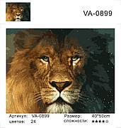 """Набір для розпису по номерах в коробці VA-0899 """"Лев - король звірів"""", розміром 40х50 см"""