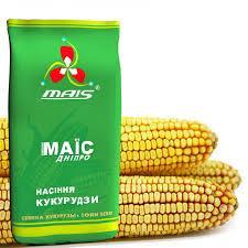 Семена кукурузы ДМ Петрос (ФАО 260) 2020 г.у. Маис Синельниково