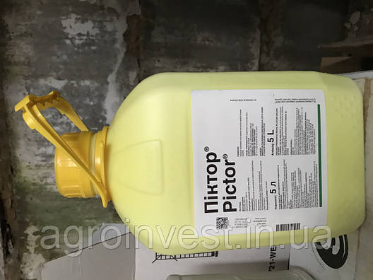 Фунгицид Пиктор 5 л (Оригинал) BASF, фото 2