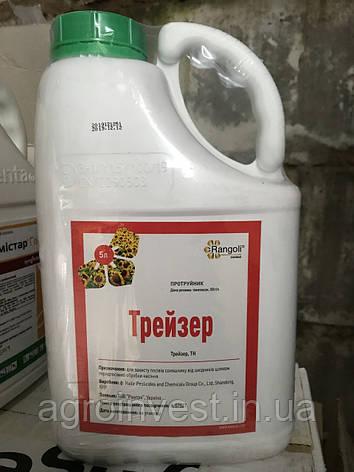 Инсектицидный протравитель Трейзер 5л Ранголи(ан. Круизер), для протравки семян пшеницы, ячменя, подсолнечника, фото 2