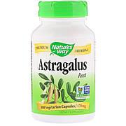 Корень Астрагала, Astragalus Root, Nature's Way, 470 mg, 100 Капсул
