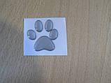 Наклейка s силиконовая Лапа 35х34х1.0мм серая серебристая №1 на авто автомобильная, фото 3