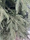Ель новогодняя литая смерека 2,3 м, фото 8