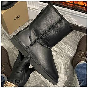 Женские зимние Ugg Classic Short Leather Black зимние угги класик шорт зимові уггі жіночі зимові Ugg Short II