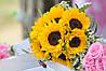 Картина Цветы подсолнухи на натуральном дереве Артприз 40х60см (КДПЦ4060/16)
