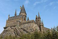 Картина Замок Хогвартс на натуральном дереве Артприз 40х50см (КДЗ10/4050/120), фото 1