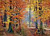 Картина Осень в лесу на натуральном дереве Артприз 20х30см (КДЛ2/2030/136)