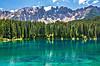 Картина Горы лес река на натуральном холсте Артприз 50х60см (ГР7/5060/58)