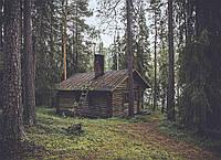 Картина Лесная избушка на натуральном дереве Артприз 30х40см (КДЛ9/3040/143), фото 1