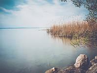 Картина Утро на озере на натуральном дереве Артприз 50х50см (КДО1/5050/146), фото 1