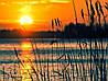Картина Закат на озере на натуральном дереве Артприз 30х50см (КДО2/3050/147)