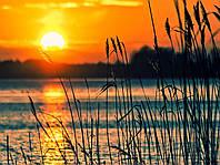 Картина Закат на озере на натуральном дереве Артприз 30х50см (КДО2/3050/147), фото 1