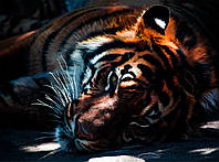 Картина Тигр на натуральном холсте Артприз 50х90см (ДКШ5/5090/78), фото 1