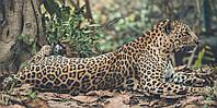 Картина Леопард в лесу на натуральном холсте Артприз 40х70см (ДКШ23/4070/96), фото 1