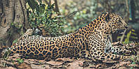 Картина Леопард в лесу на натуральном холсте Артприз 50х100см (ДКШ23/50100/96), фото 1