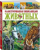 Иллюстрированная энциклопедия животных. Клементина Коппини (Твердый)
