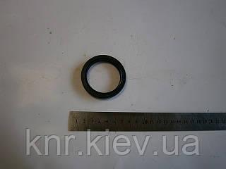 Сальник ступицы задней FAW-1011 (Фав)