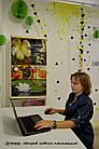 Обогреватель-картина инфракрасный настенный ТРИО 400W 100 х 57 см, лотос, фото 2