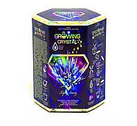 """Набор для проведения опытов """"Growing Crystal"""" (укр) GRK-01-04U"""