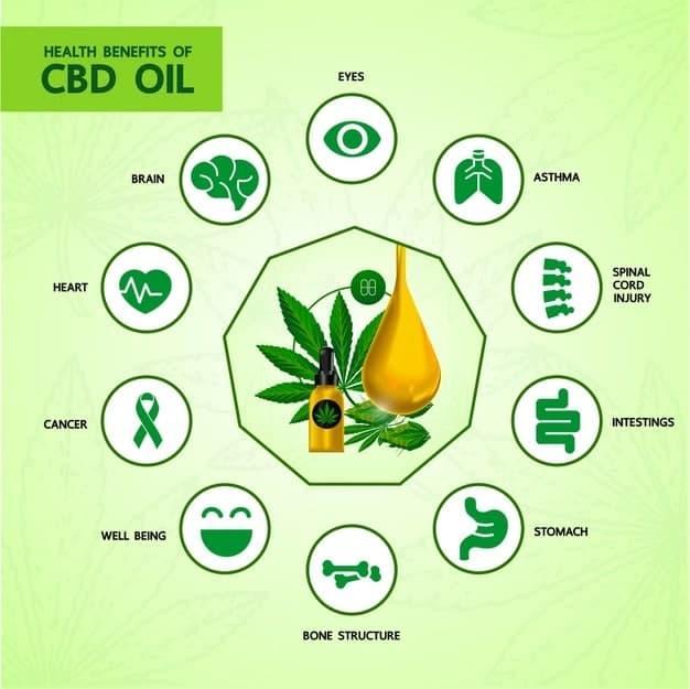 CBD Enecta Oil Tincture