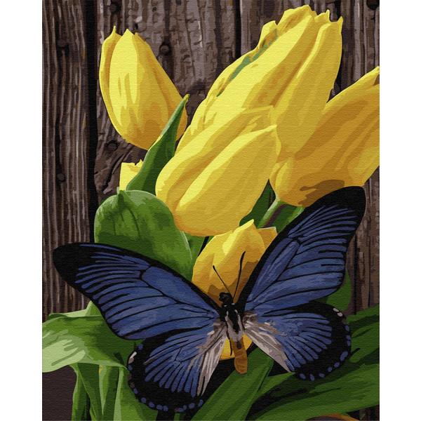 Бабочка на тюльпанах (GX33215). Картины по номерам 40×50 см.
