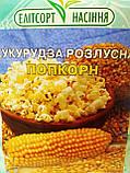 Насіння кукурудзи Попкорн среднераняя 50 грам Элитсортнасиння Україна, фото 2