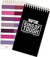 Фиолетовые и пурпурные тона (RAL 4000+)