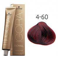 Краска для седых волос Schwarzkopf Professional Igora Royal Absolutes, 60 мл 4-60 Средне-коричневый шоколадный натуральный