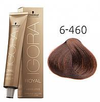 Краска для седых волос Schwarzkopf Professional Igora Royal Absolutes, 60 мл 6-460 Темно-русый бежевый шоколадный