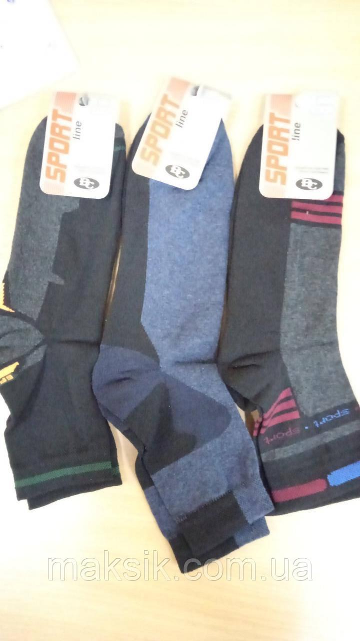 Мужские носки Версаль махровая пятка