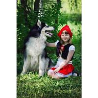 Карнавальный костюм Красная шапочка для девочки (велюровый)