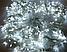 Гирлянда 100LED 10м (контрол.220V) (БП), Новогодняя бахрама, Светодиодная гирлянда, Уличная гирлянда, фото 6