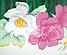 Эмалированная кастрюля с крышкой Benson BN-111 белая с цветочным декором (1,9 л) | кухонная посуда | кастрюли, фото 3