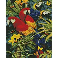 """Алмазная мозаика """"Разноцветные попугаи"""" 40*50 см, ТМ Идейка (АМ6137)"""