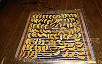 КИЛИМОК-СУШАРКА ДЛЯ ФРУКТІВ 80Х350 (ОБІГРІВАЧ ДЛЯ КУРЧАТ, КРОЛІВ, СУШКА ДЛЯ ФРУКТІВ, ГРИБІВ, ЯГІД) 560ВТ