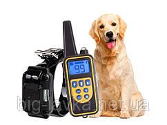 Обучающий электро ошейник для тренировки собак с д/у 1 ресивер