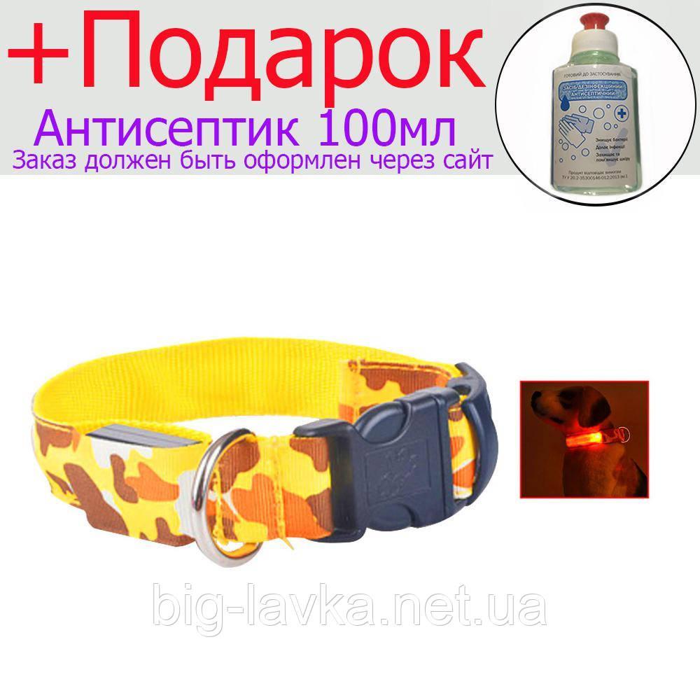 Светодиодный ошейник для животных (собака, кошка)  Желтый