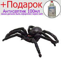 Пластиковый паук Тарантул 10 шт./компл.