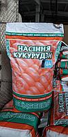 Семена кукурузы Запорожский 333 МВ, фото 1