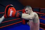 Боксерські Лапи PowerPlay 3041 Чорно-Червоні PU [пара], фото 5