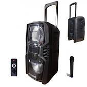Портативная акустика TUXAN с беспроводным микрофоном, Мощность 150 ВТ, радио, usb, карта памяти, Чёрная